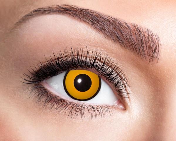 Kontaktlinsen Crow gelb