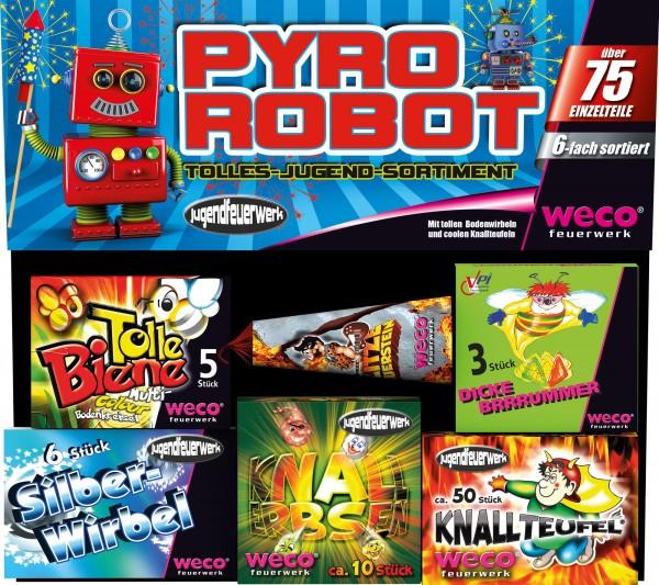 Jugendfeuerwerk Sortiment Pyro Robot