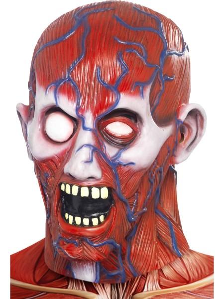 Anatomy Man Maske
